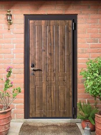 металлическая наружную дверь для дома